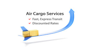 Courier Services For Belgium From Noida